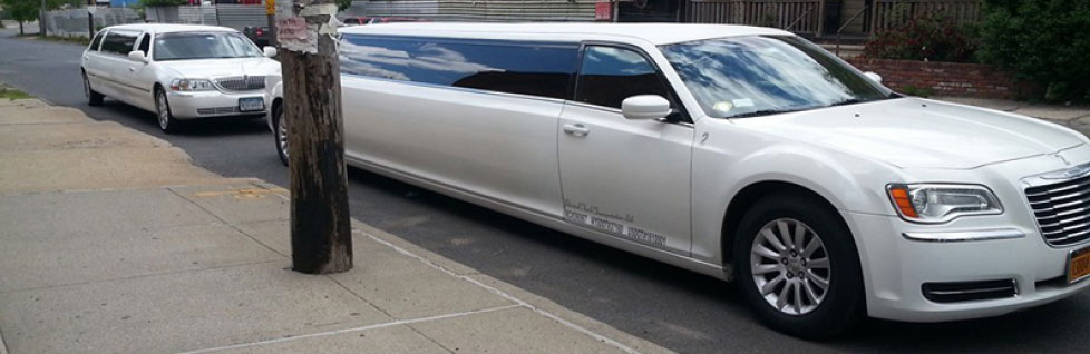 limousine party bus